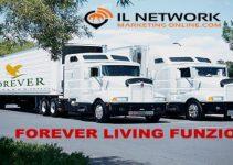 network marketing Forever Living