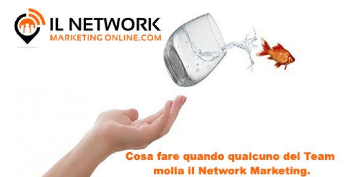 molla il network marketing
